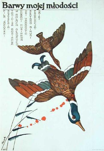 Colors of my Youth Tokihisa Morikawa