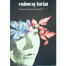 Scarlet Flower Irina Povolotskaya Maria Ekier Polish Poster