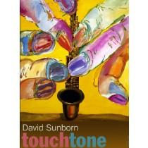 David Sanborn Touchtone Leonard Konopelski Polish Poster