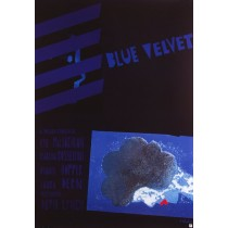 Blue Velvet David Lynch Sebastian Kubica Polish Poster