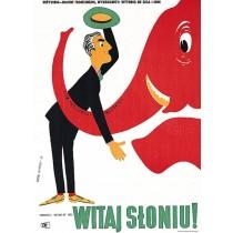 Hello Elephant Gianni Franciolini Eryk Lipiński Polish Poster