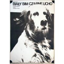 White Bim Black Ear Stanislav Rostotsky Jacek Neugebauer Polish Poster