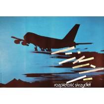 Wingspan Gennadi Glagolev Andrzej Nowaczyk Polish Poster