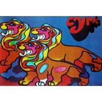 Circus Lions Tadeusz Jodłowski Polish Poster