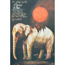 A Passage to India David Lean Wiktor Sadowski Polish Poster