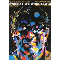 Świerzy in Wrocław Waldemar Świerzy Polish Poster