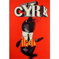Circus Seal Waldemar Świerzy Polish Poster
