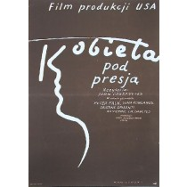 Woman Under the Influence  Mieczysław Wasilewski Polish Poster