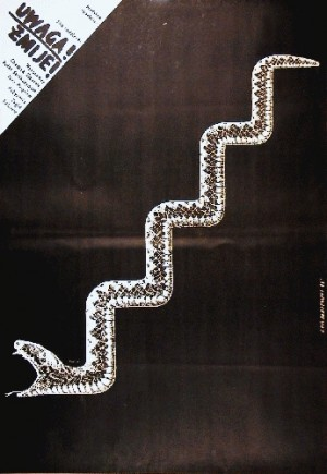 Look out, snake! Zakir Sabitov Lech Majewski Polish movie poster