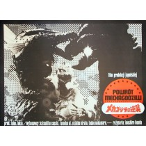Godzilla Ishiro Honda Jakub Erol Polnische Plakate