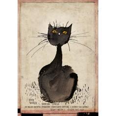 Über Katzen