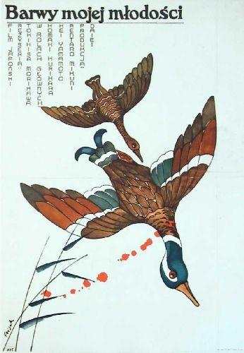Barwy mojej młodości Tokihisa Morikawa