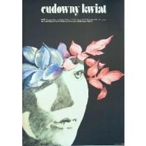 Cudowny kwiat Irina Povolotskaya Maria Ekier polski plakat