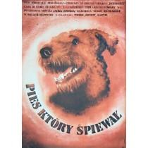 Pies który śpiewał Sergiu Nicolaescu Krystyna Hoffman-Pągowska polski plakat