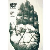 Zapach pigwy Mirza Idrizovic Janusz Obłucki polski plakat