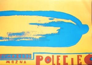 Aids 2 Sebastian Kubica Polski plakat